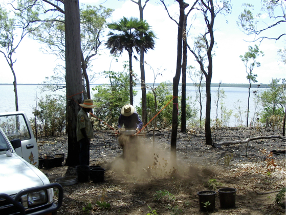Sieving shell mound samples, Mission River